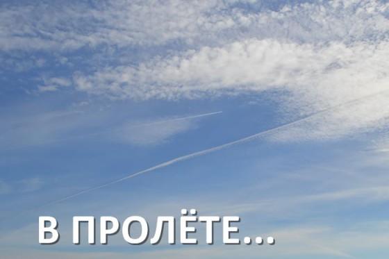 Выпали все страницы сайтов из индексации Яндекса