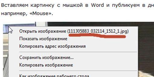 ЛиРу называет изображения при публикации из Word по заголовку поста